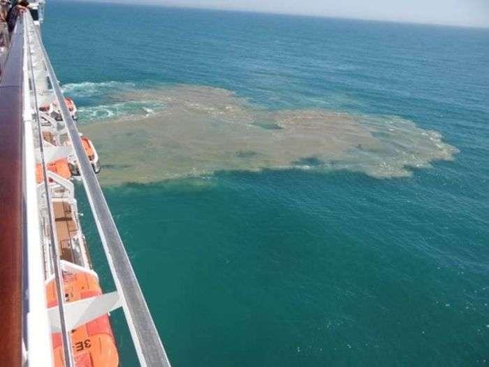 Як розкішні круїзні лайнери позбуваються стічних вод (3 фото)