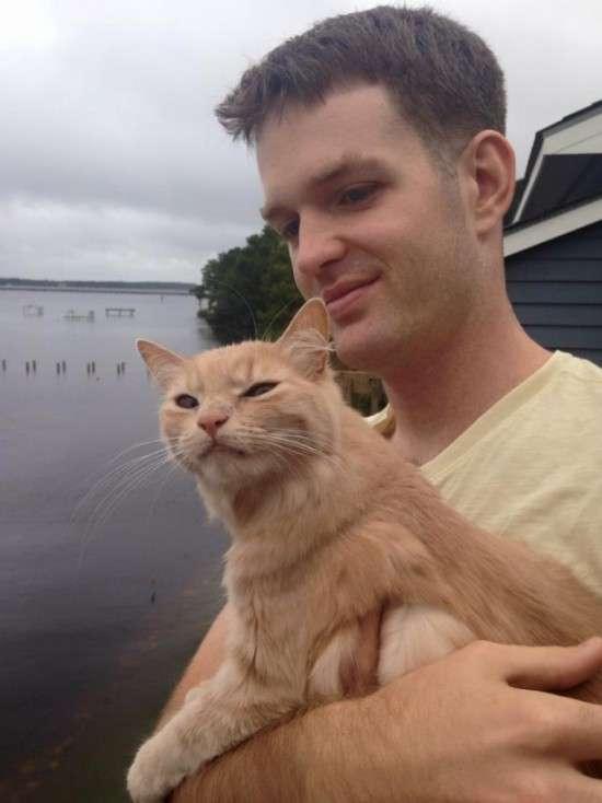 Емоції кота, вперше опинився на вулиці (4 фото)