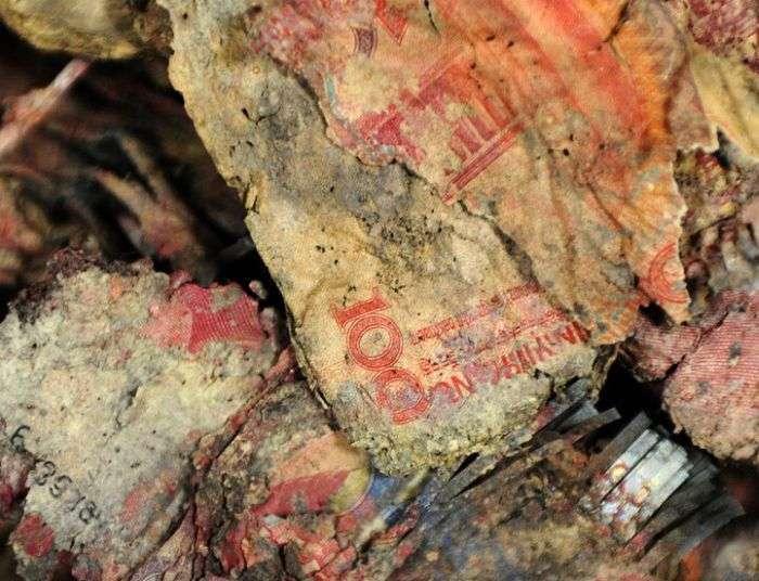 Заховані китайської сімєю 16 000 доларів згнили в землі протягом 4-х років (3 фото)