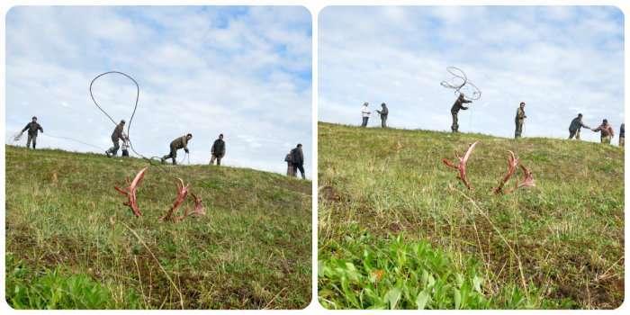 В гостях у чукотських оленярів (29 фото)