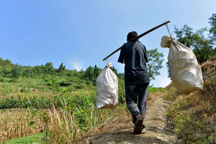 Китайський фермер-інвалід без рук веде господарство і доглядає за хворою матірю (10 фото)