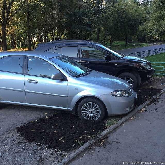 Як боротися з автомобілістами, які знищують газони (6 фото)