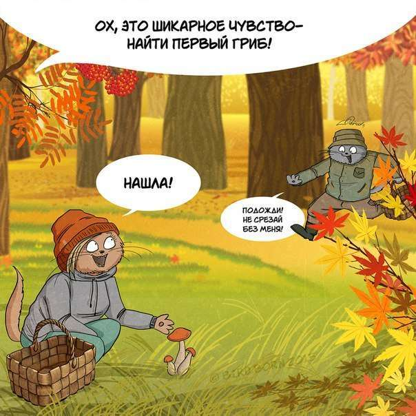 Вся краса осінньої пори (10 картинок)
