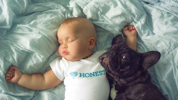 Міцна дружба пятимесячных малюків (7 фото)