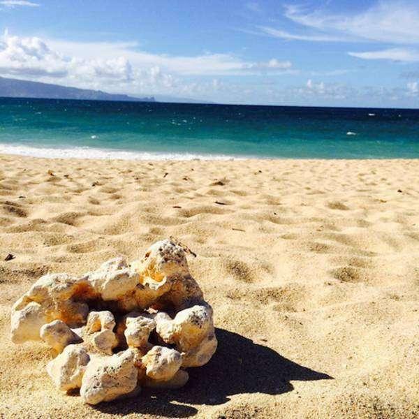 Ось чому Гаваї користуються такою популярністю серед туристів (32 фото)