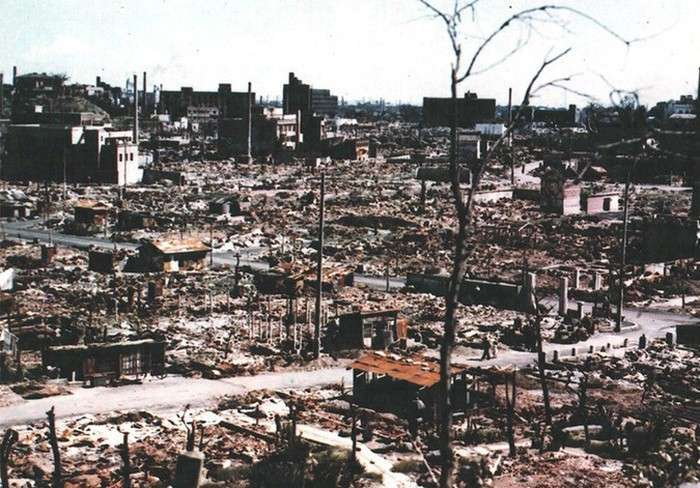 Дерева Хіросіми, які зуміли пережити ядерний вибух (9 фото)