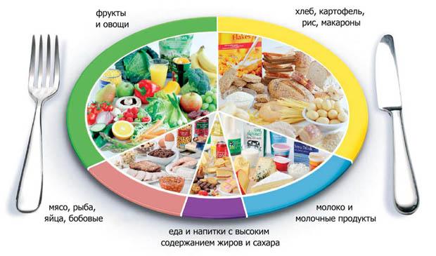 Большая часть жителей России придерживается диеты Интересное