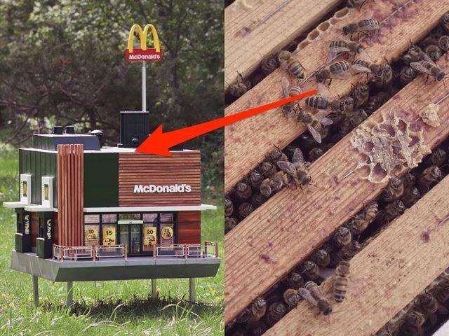 Макдональдс открыл крошечный ресторанчик для пчел Интересное
