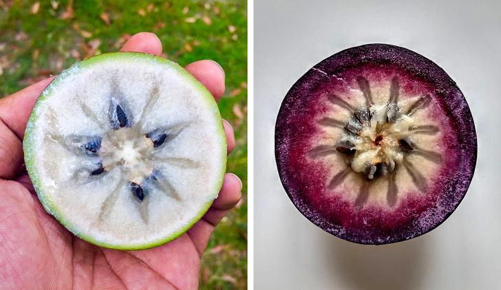 16 редких экзотических фруктов, которые вы увидите в первый раз Интересное